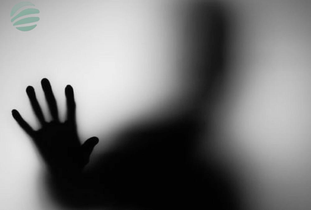 La DSI face au Shadow IT